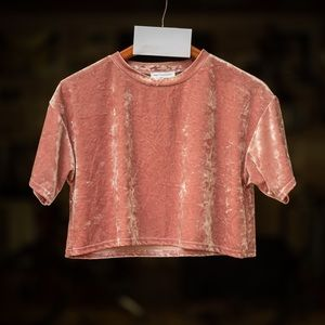 Urban Outfitters crushed velvet cropped tee